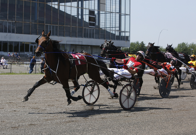 Scarborough Downs - Maine's Best Bet Since 1950!
