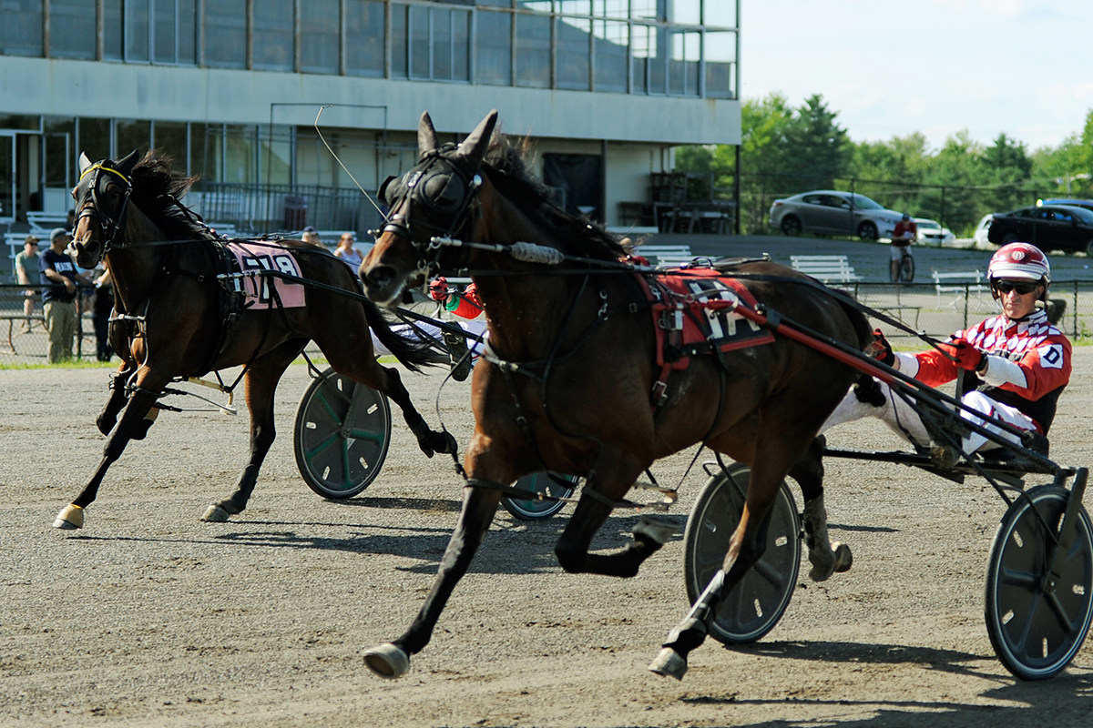 4c3e30160 Ivan Davies proved masterful at the Downs on Sunday (8 19) as the veteran  trot-specialist scored imposing wins in Maine Sire Stakes competition